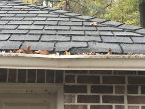 Shingle roof edge with damage